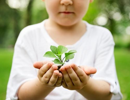 Estudio de Impacto Ambiental Clínica Batán de